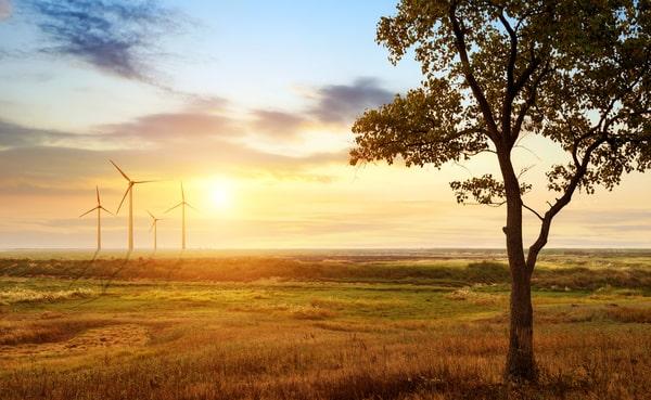 Les grands enjeux du développement durable
